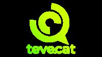 Ver Teve.cat en directo online